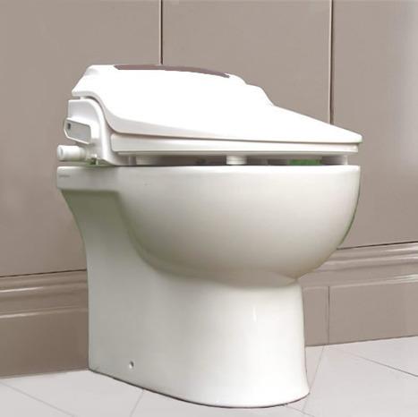 kai btw01r combination toilet and bidet seat. Black Bedroom Furniture Sets. Home Design Ideas