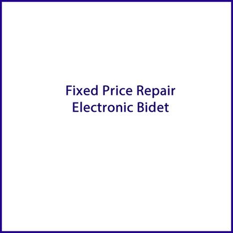 Fixed price repair Electronic Bidet