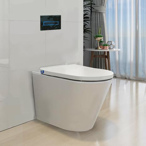 Japanese style smart toilet bidet
