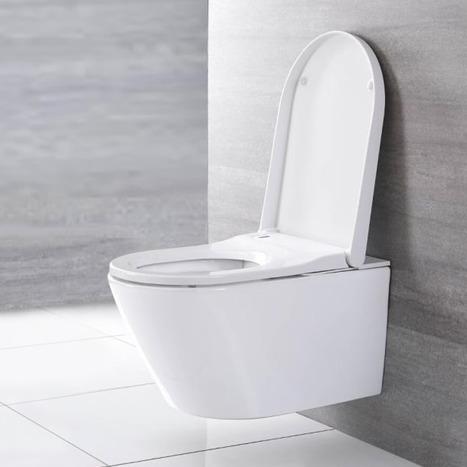 Japanese style wall hung smart toilet bidet