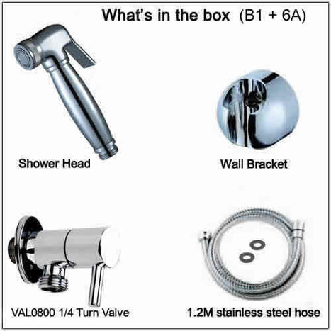 BRA2990: Bidet Shower & Valve